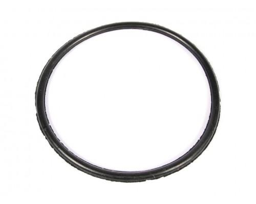 Кольцо уплотнительное бензонасоса погружного ГАЗ-3302 ДВС405
