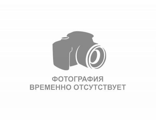 Лента топливного бака ГАЗ-2705 металлический бак сборе